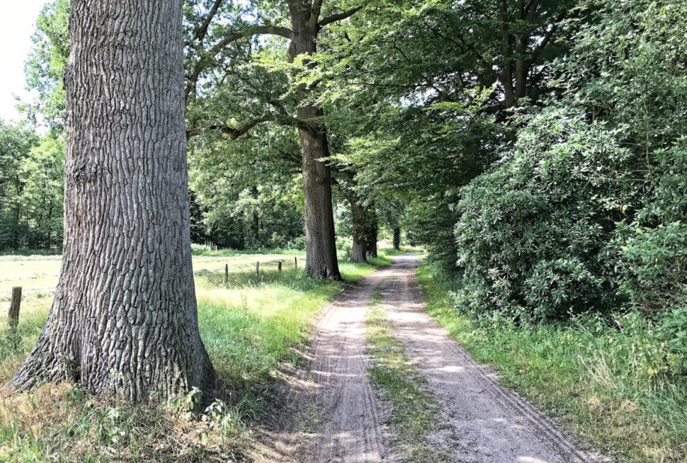 Ommen, Kruupweg 3