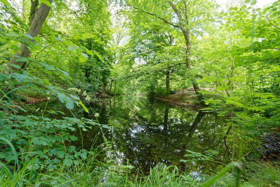 Schalkhaar, Waterdijk 3